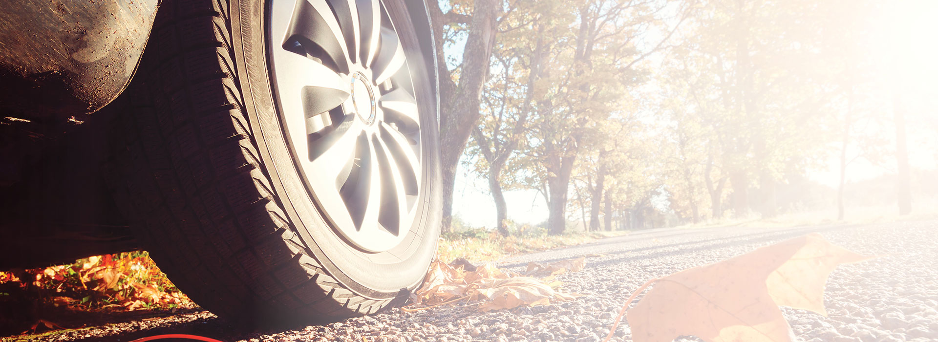 Car tire on road. Fall leaves