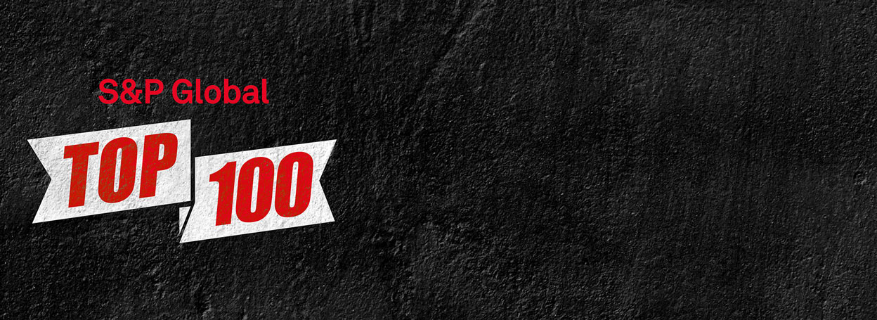 S and P Top 100 banner