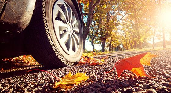 auto loans, car driving on a road with fallen leaves
