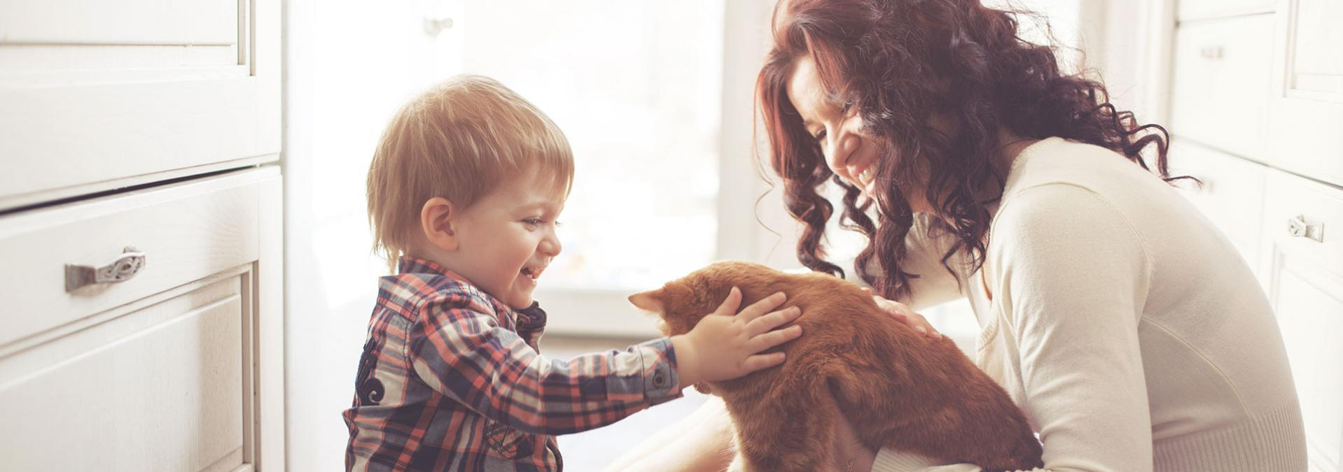 Woman holding cat while kid pets animal